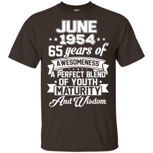 Vintage Awesome June 1954 65th Birthday Gift T-Shirts, Hoodie, Tank Apparel