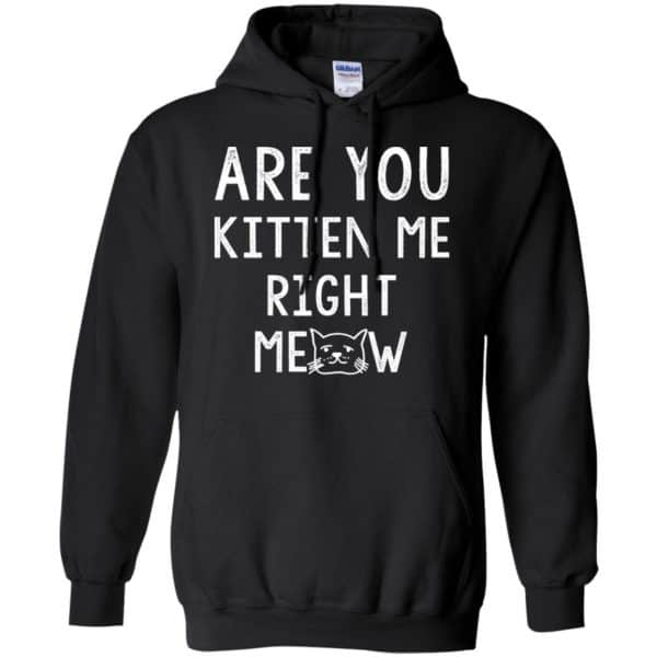 Are You Kitten Me Right Meow Shirt, Hoodie, Tank Apparel