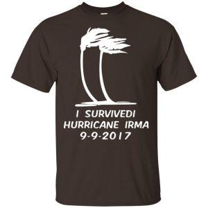 I Survived Hurricane Irma 2017 Shirt, Hoodie, Tank Apparel 2
