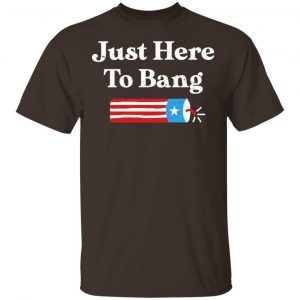 Just Here to Bang 4th of July Shirt, Hoodie, Tank New Designs